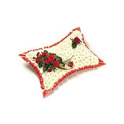 Traditional Based Pillow